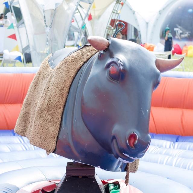 Родео бык в аренду – идеальное решение для вашего мероприятия
